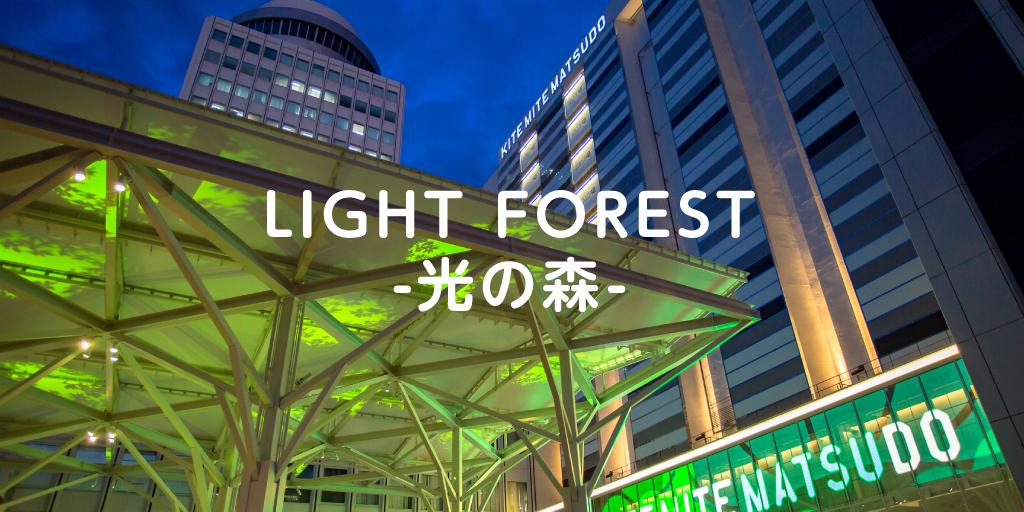 松戸の夜の新しい景色  LIGHT FOREST に注目!