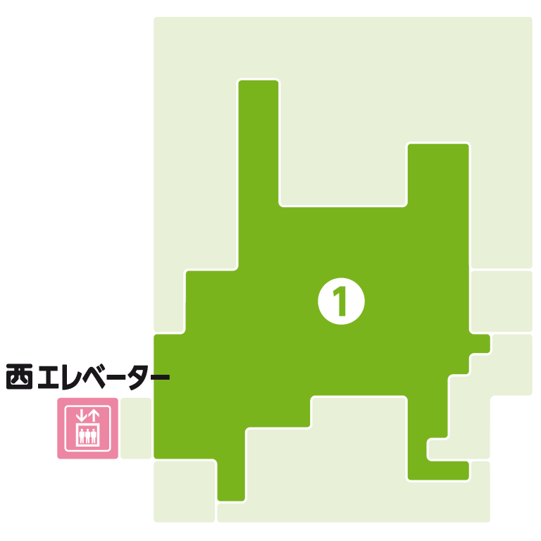 RF - KITE MITE MATSUDO | キテミテマツド